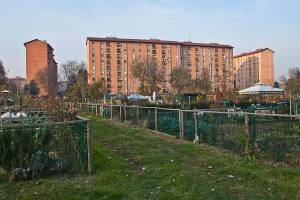 orti urbani milano